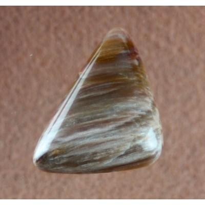 Petrified Wood Freeform Gemstone Cabochon