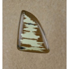 Owyhee Jasper Freeform triangular gemstone cabochon